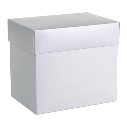 Caixa Para Canecas Metalizada Prata (c/ 6 pc)